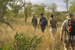 Kruger-Guided-Walk