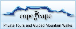 Capescape guided tours -a service provider -Walking holidays South Africa