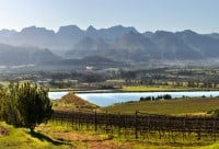 Boschendal Valley, Cape Winelands Cycling
