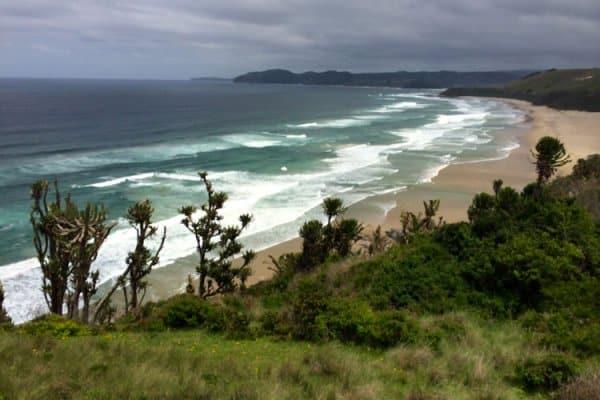 wavecrest-beach