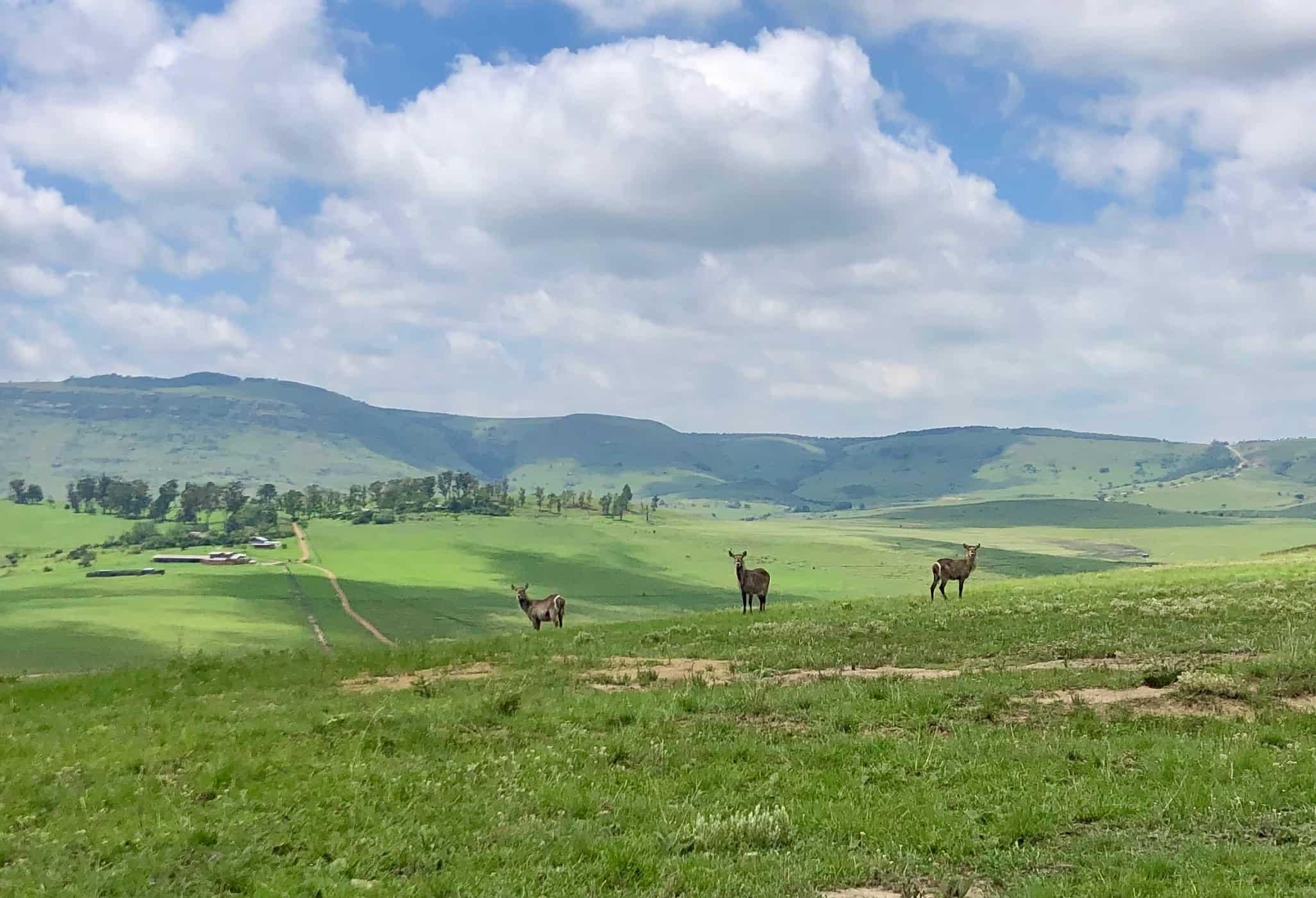Drakensberg-Giants-Castle-Hiking-04.jpg
